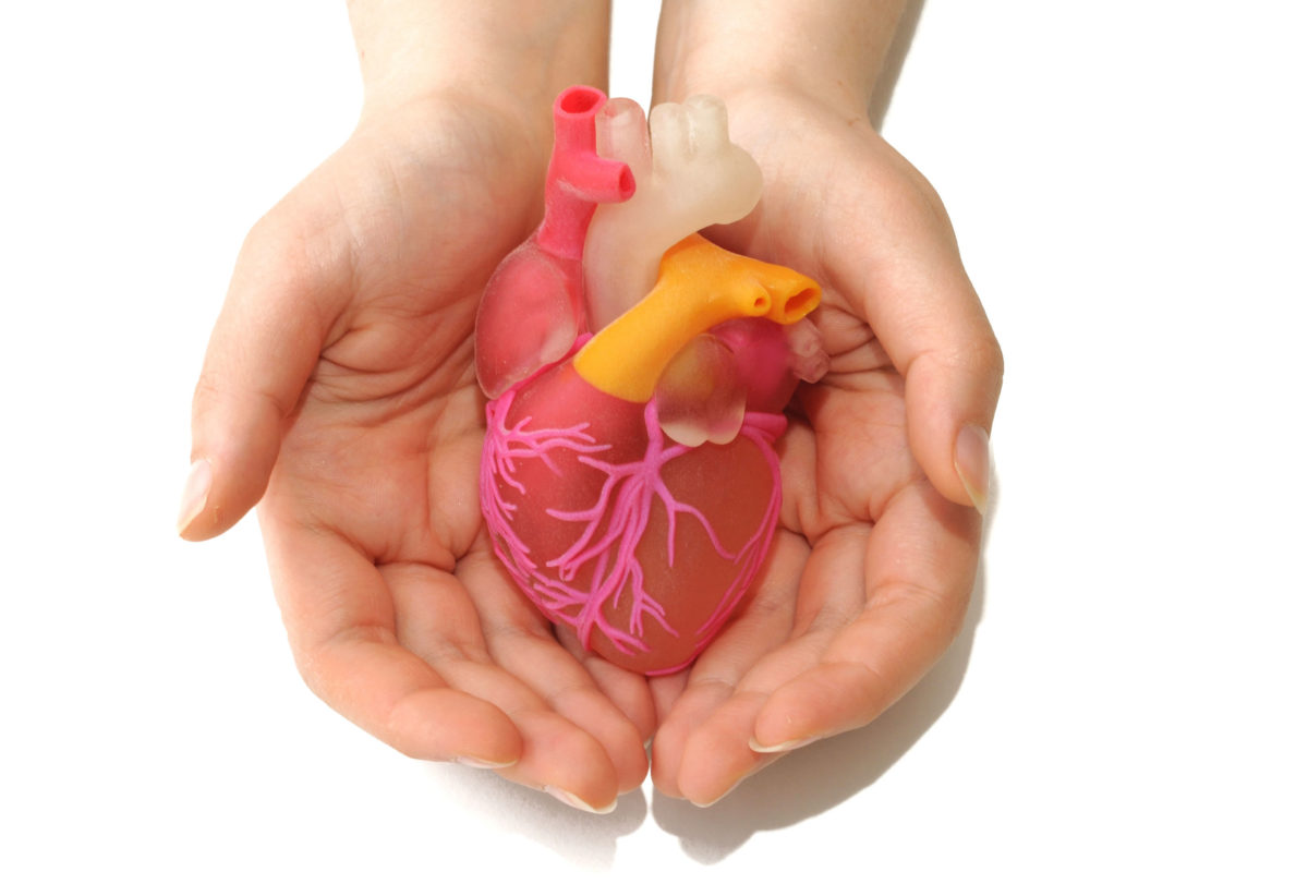 new-port-richey-mitral-valve-heart-repair-replacement-1200x822.jpg
